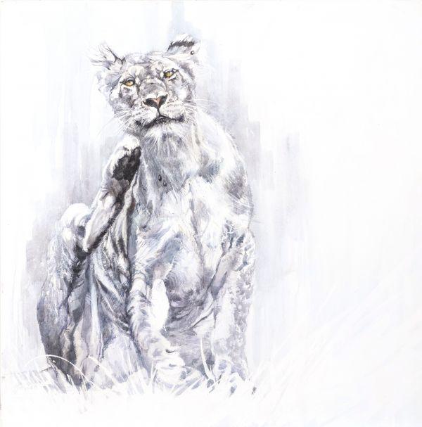 Scratching lioness - encaustique sur toile - 80 80 cm