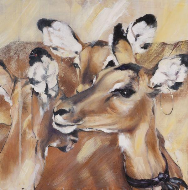 Impalas élégantes - huile sur toile - 50/50 cm