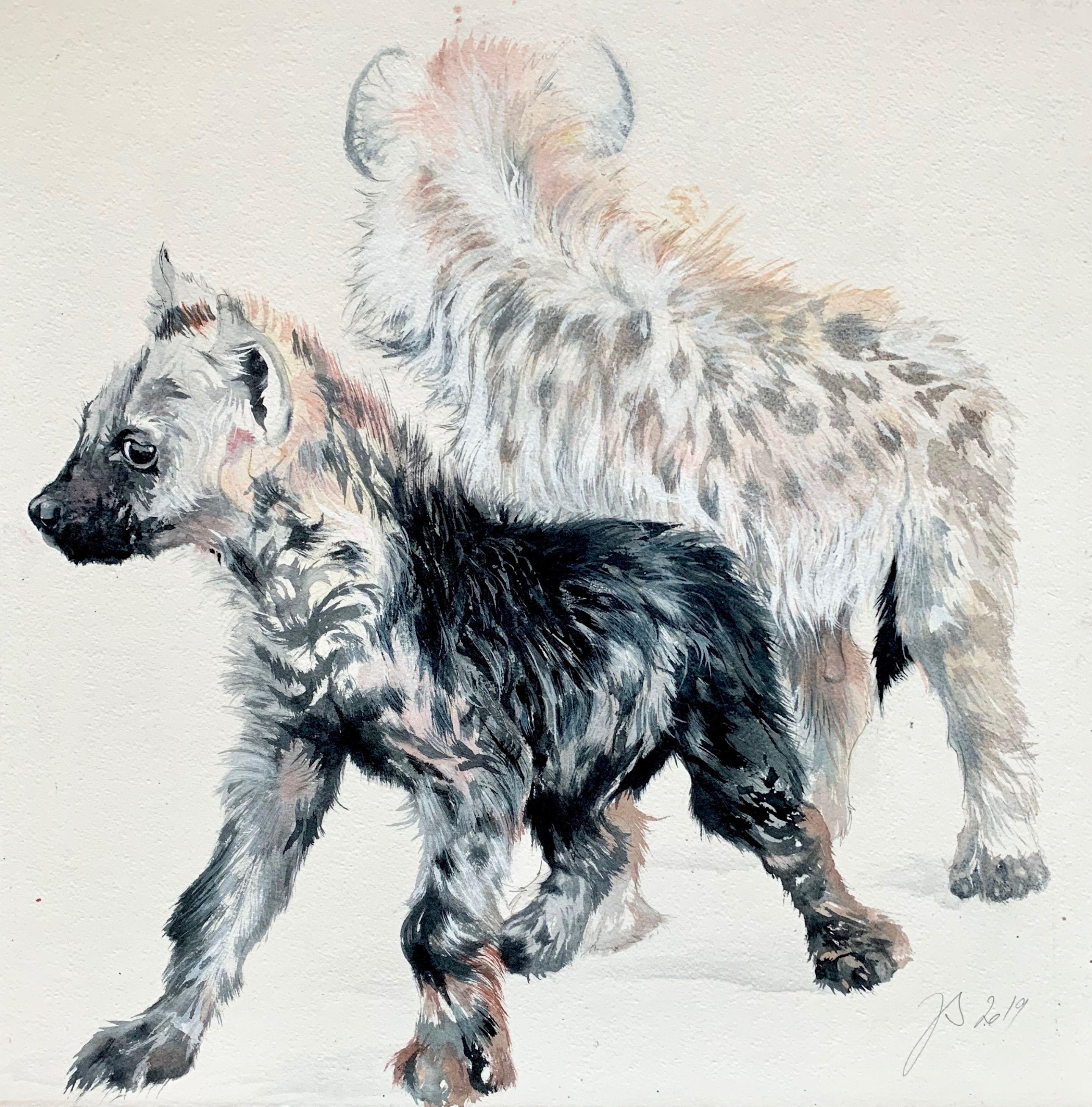 bebes hyenes curieux - 55-55cm.jpg