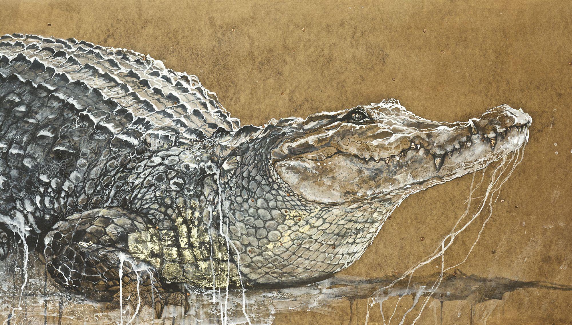 crocodiles - détail 1 .jpg