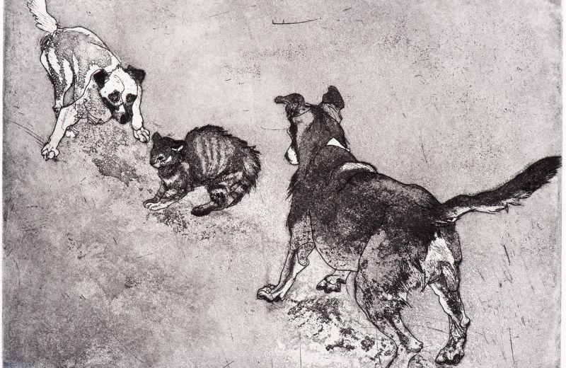 les chiens d Istanbul 3 - aquatinte sur cuivre.jpg