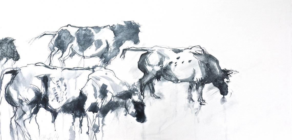 1vaches blanc bleu belges - encre et gesso sur bois- 70-140 cm.jpg