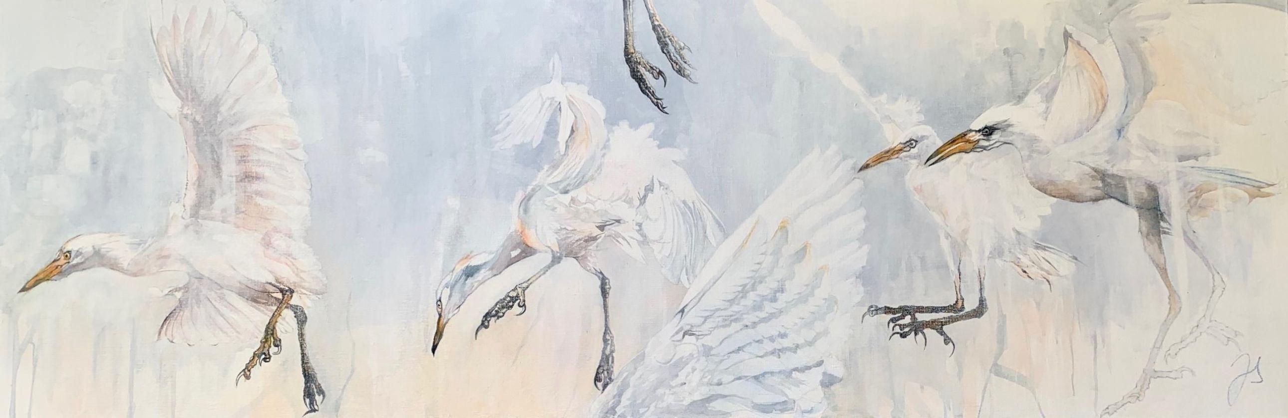 restless (herons garde bœufs) - 50-150 cm.jpg